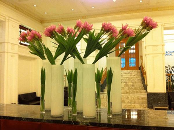 Những điều cần chú ý khi chưng hoa trong nhà ngày tết