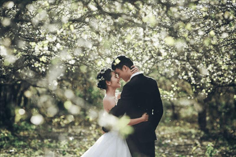 Màu sắc tinh khôi, tươi tốt chính là khung cảnh đẹp để chụp ảnh cưới
